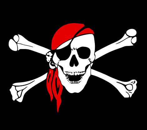 """Superdebata s """"Piráti (a STAN)""""?"""